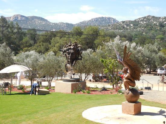 Salerno Winery: winery grounds