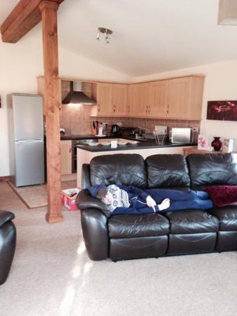 Herrington Park Holiday Log Cabins York: Longe/kitchen