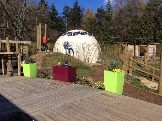 Dome Garden: Zip Wire Fun