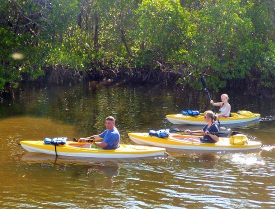 Eco Paddlesportz Llc Kayaking Bunche Beach Fort Myers Fl