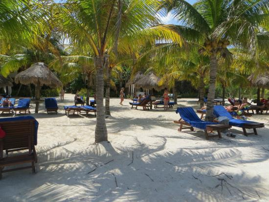 Flott strandomr de picture of villas hm paraiso del mar for Villas hm paraiso del mar holbox tripadvisor