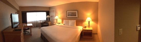 Crowne Plaza Los Angeles Harbor Hotel : King room