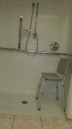 Hampton Inn Hot Springs: Well designed roll-in shower