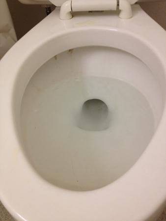 Nasty toilet