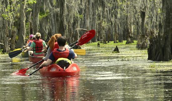 Kayak Travel Booking Reviews