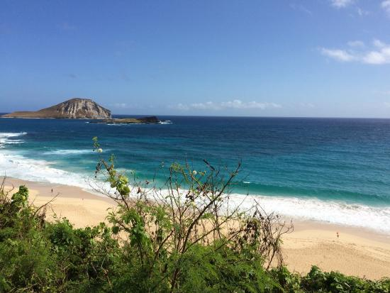 Fun Hawaii Travel - Day Tours: Oahu day trip