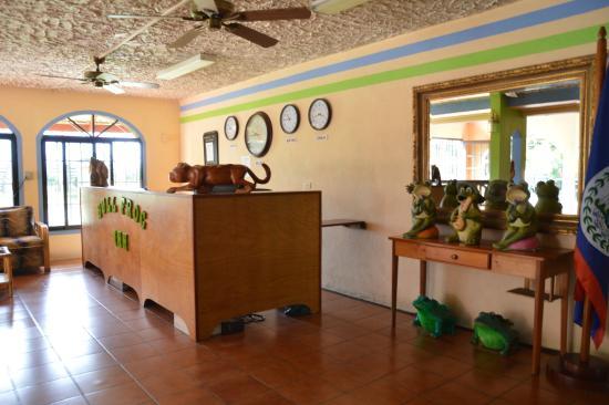 Bull Frog Inn : reception