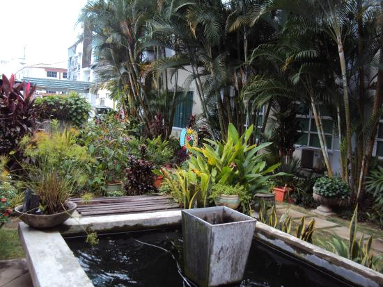 Wesberly Apartments: Koi fish pool and the entrance to the aprtment