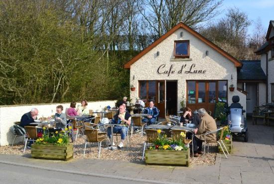 Cafe d' Lune