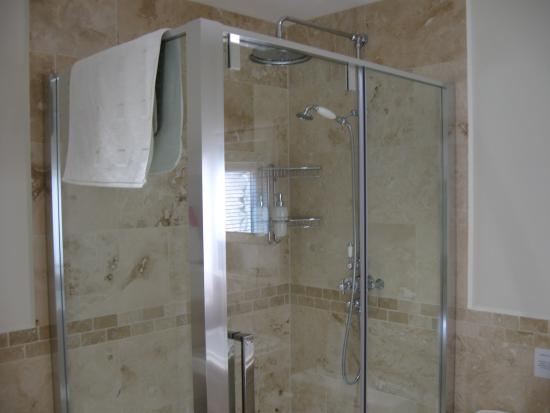 Aria House Bed and Breakfast: amazing shower unit!
