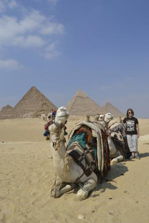 Egypt Budget Tours - Private Day Tours: Pose for the camera at Giza Pyramids