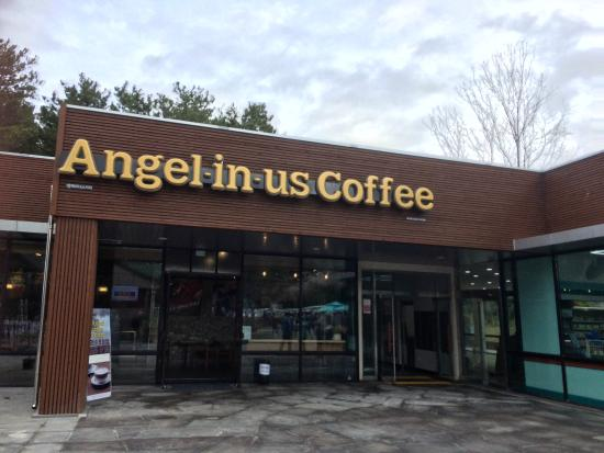 Halla Arboretum: Newly opened Angel-in-us Coffee