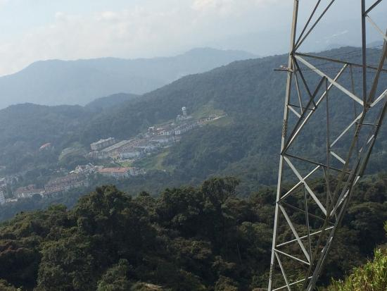 Cameron Highlands Trail No. 10: View from the peak