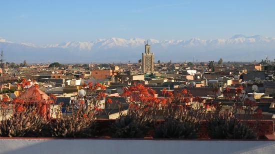 Maison de la Photographie de Marrakech : Utsikt från kaféet på taket.