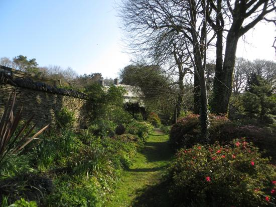 The Old Rectory St. Juliot: Beautiful sunny morning
