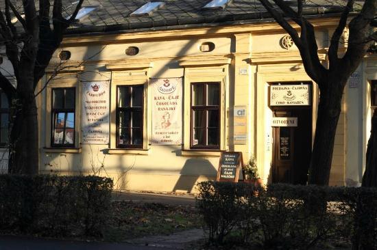 Cajovy Dom - Cajovna