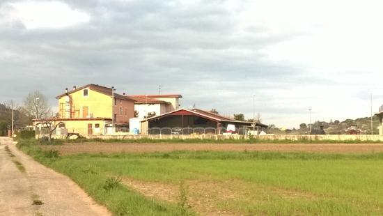 Agriturismo San Raphael : San Raphael vista dalla passegiatina mattutina