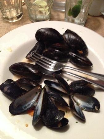 The Ship Inn: Mussels not opened