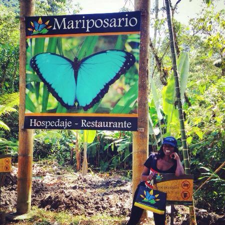 Mindo Canopy Adventure: I love butterflies