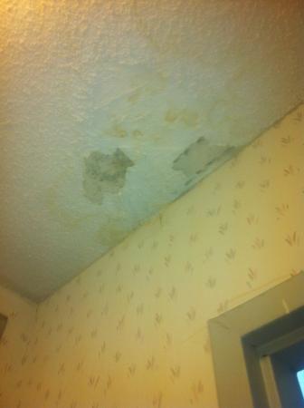 Motel Super 7 : Water damage ceiling