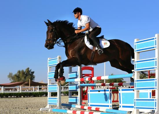 Equestrian Club Picture Of Al Ain Equestrian Shooting
