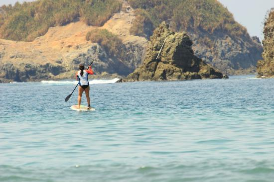 Blue Horizon Surf and Trips: Paddle boarding