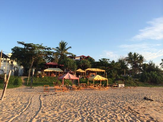 Blue Horizon Hotel: Från stranden