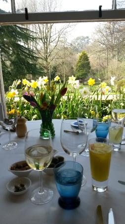 Little Barwick House: our wonderful table view