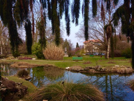 Even in March the nature is beautiful - Picture of Jardin Botanique ...