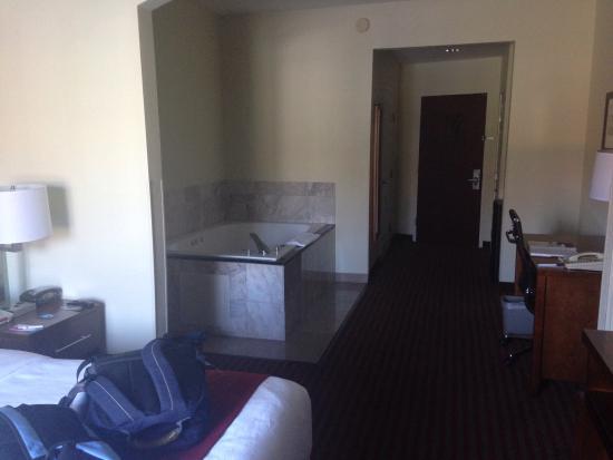 Comfort Suites Leesburg : Hot tub in room