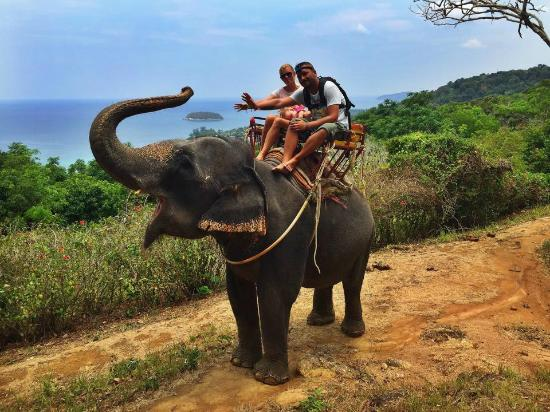 Sea View - Picture of Kok Chang Safari Elephant Trekking, Kata Beach - TripAd...