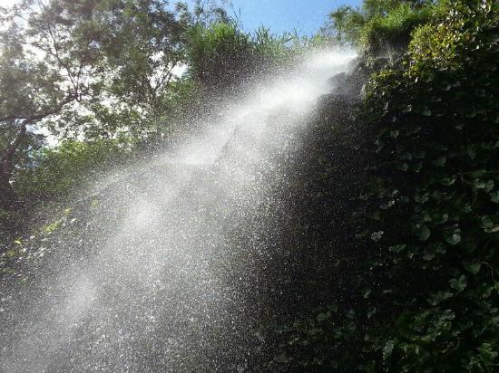 Cachoeira do Pinga: Pinga