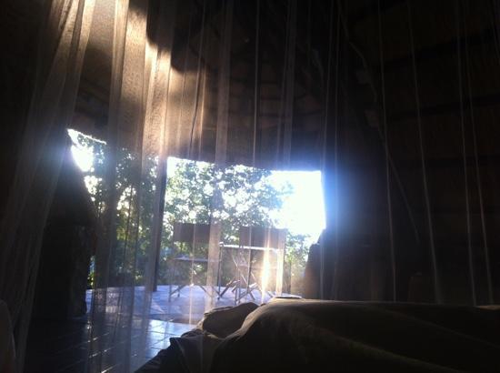 Hornbill Lodge: Guten Morgen