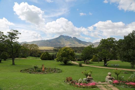 Moolmanshoek Private Game Reserve: The view