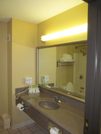 Holiday Inn Express Warrensburg: Plenty of counter space