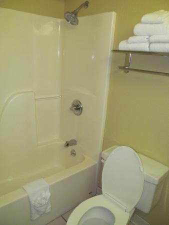 Holiday Inn Express Warrensburg: Clean bathroom