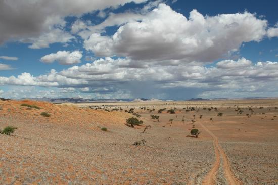 Tsondab Valley Scenic Reserve: Ein schöner und nicht ganz unanstrengender Hike durch das Tsondab Valley zu den Dünen