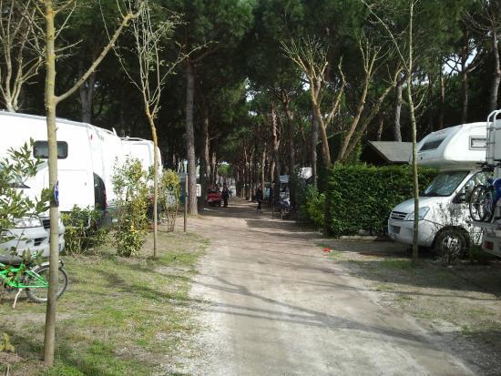 Holiday Village Florenz: Camping
