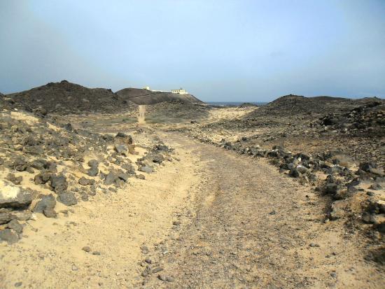 Sendero - Picture of Isla de Lobos, La Oliva - TripAdvisor