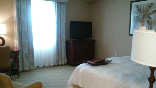 Hampton Inn New Smyrna Beach: king bed