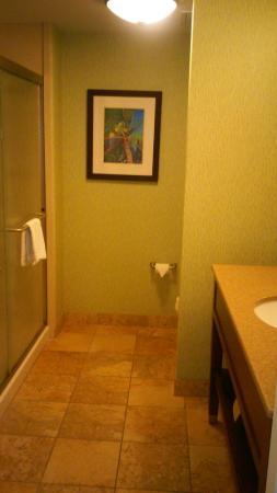 Hampton Inn New Smyrna Beach: big shower, big bathroom