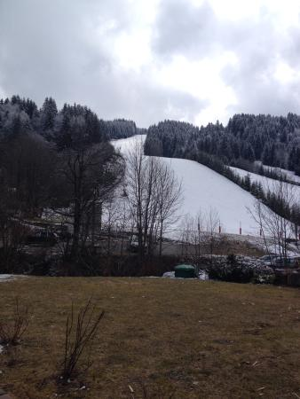 Chalet Alouette : View from chalet