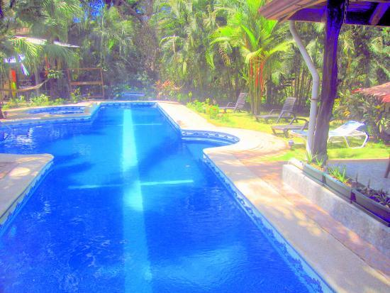 Giardino Tropicale: piscina