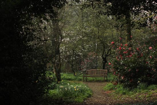 Capel Manor Gardens: Spring 2015