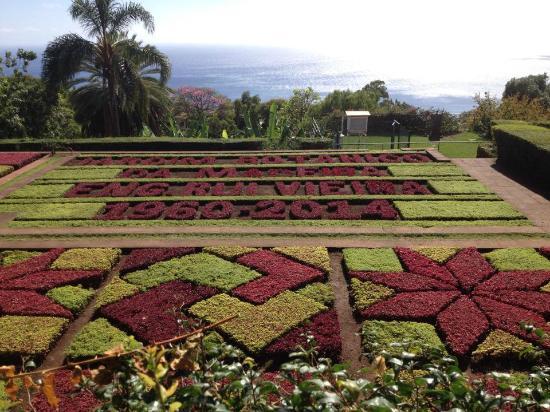 mini jardim botanico:Jardim Botânico da Madeira: Lindo Jardim Botanico