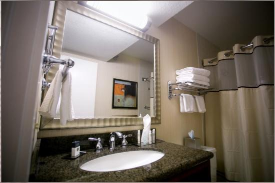 Doubletree by Hilton Minneapolis - Park Place: Suite Bathroom