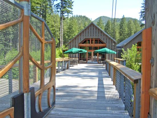 Tillamook Forest Center a gem in the Oregon Coast Range.
