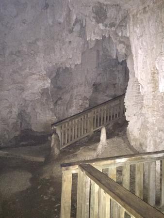 Ruakuri Walk: Ruakuri Caves