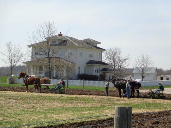 Prophetstown State Park: Horses plowing in front of the Craftsman House in April, 2014.