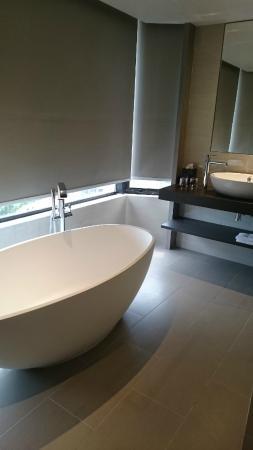 Carlton Hotel Singapore: Bathtub